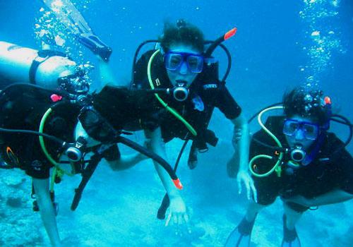 Taucher erkunden die spannende Unterwasserwelt