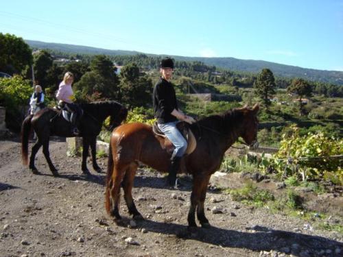 Teneriffa auf dem Pferderücken